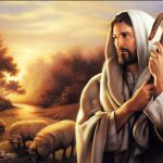 Excelente respuesta al segundo ciclo de la Catequesis del Buen Pastor